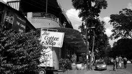 The Beginners Guide to Coffee in Moshi
