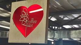 New Kids on the Block: Coffee Tree & Science of Coffee in Umhlali