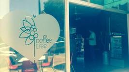 Cafe of the Week: Coffee Tree
