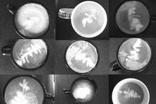 Confessions of a Home Barista: Latte Art