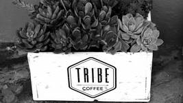 Tribe Coffee's Winter Drive