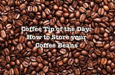 Coffee Tip of the Day: How to Store Your Coffee